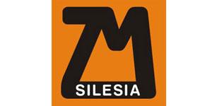ZM Silesia Zinc logo